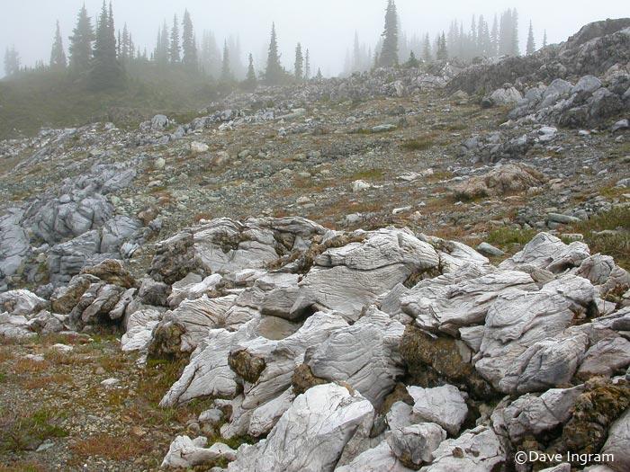 Marble Meadows Limestone