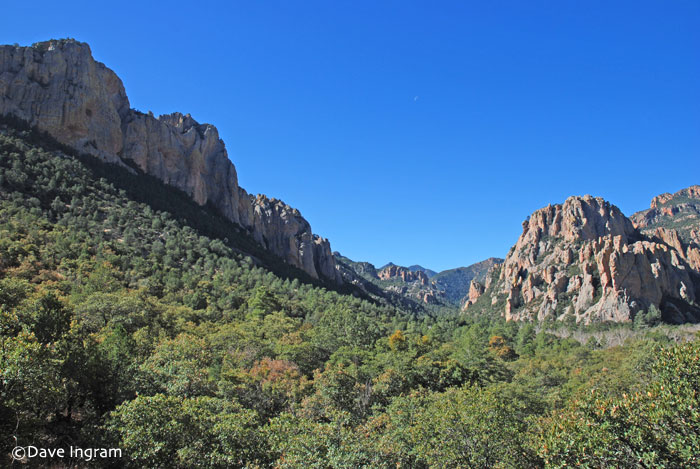 Cave Creek Canyon