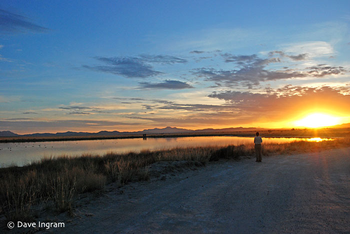 Birding as the sun goes down at Cochise Lake, Wilcox, Arizona