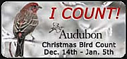 Christmas Bird Count 2009