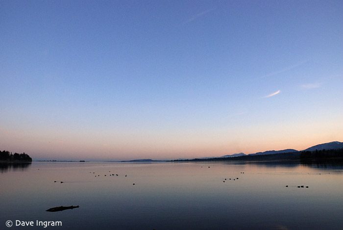 A calm evening on the Courtenay estuary reflects the beautiful colours of the sunset.
