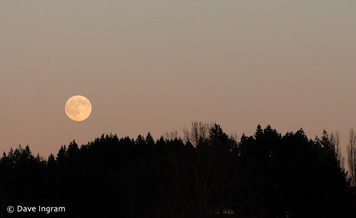 Moon rise on a rare clear evening on the west coast of BC.