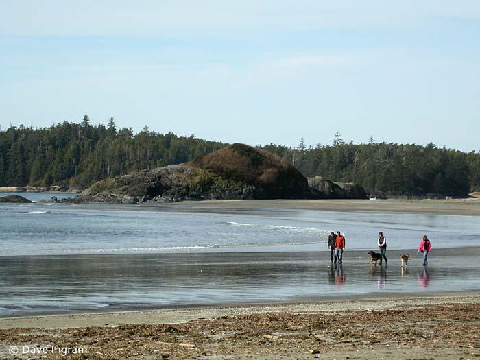 Beach Walkers at Schooner Cove