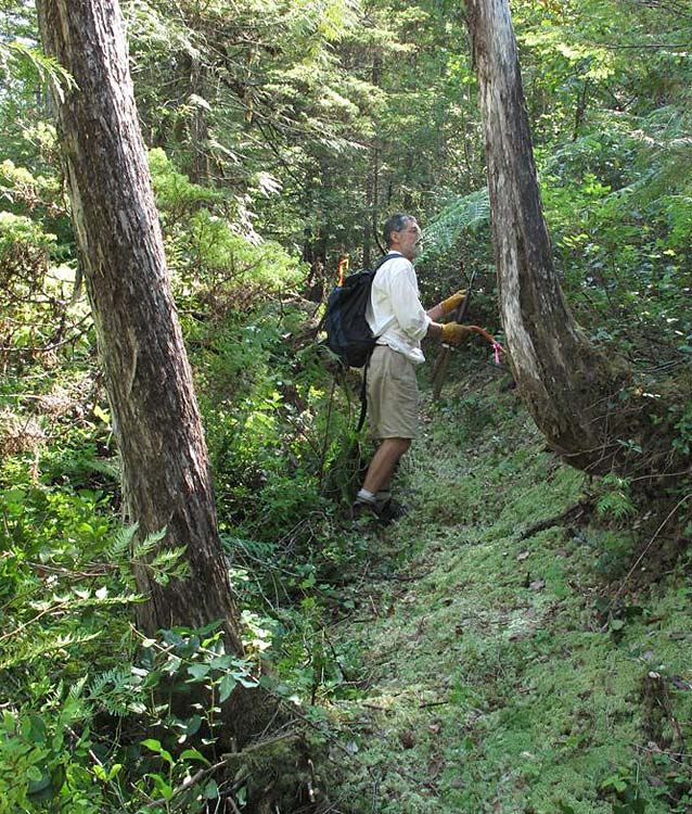 Friends of Strathcona Park Trail Building