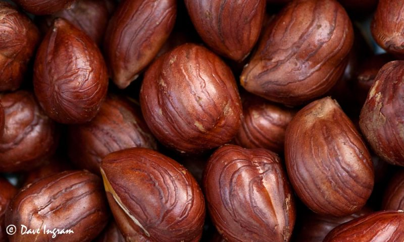 Roasted Hazelnuts