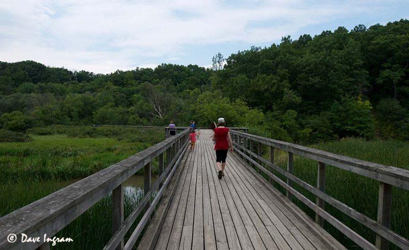 Hendrie Valley Boardwalk