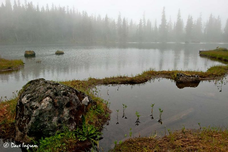 Aston Pond