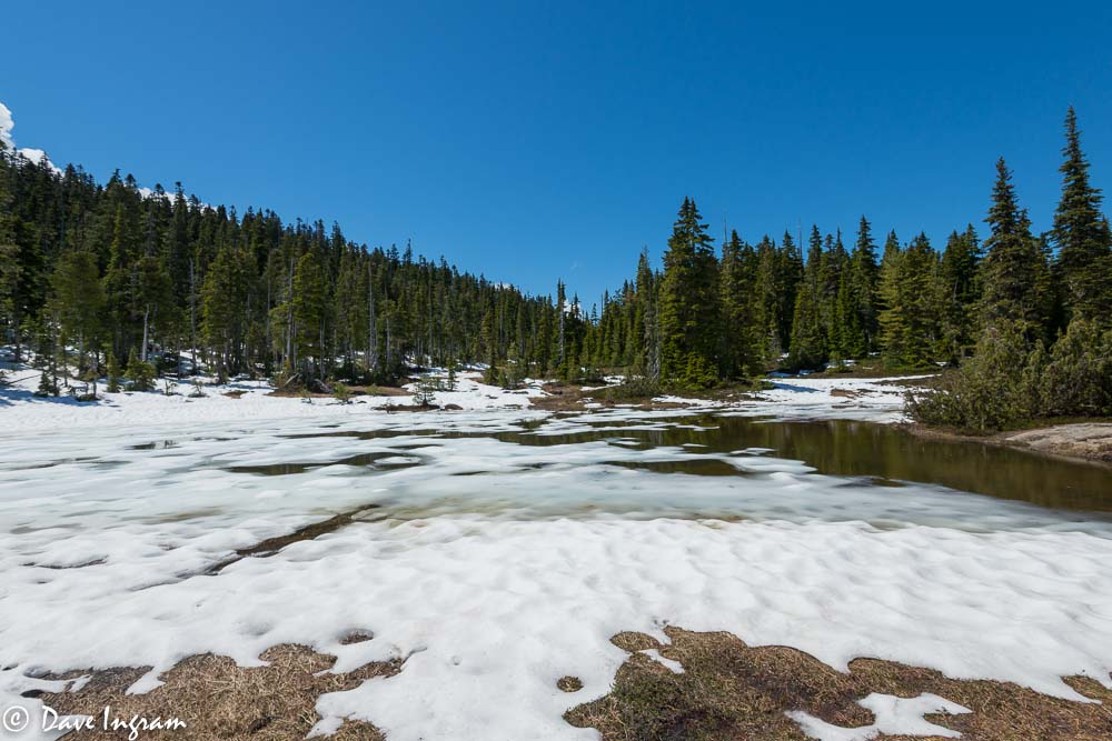 Spring Hiking Conditions At Paradise Meadows