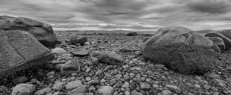 Point Holmes Boulders #1