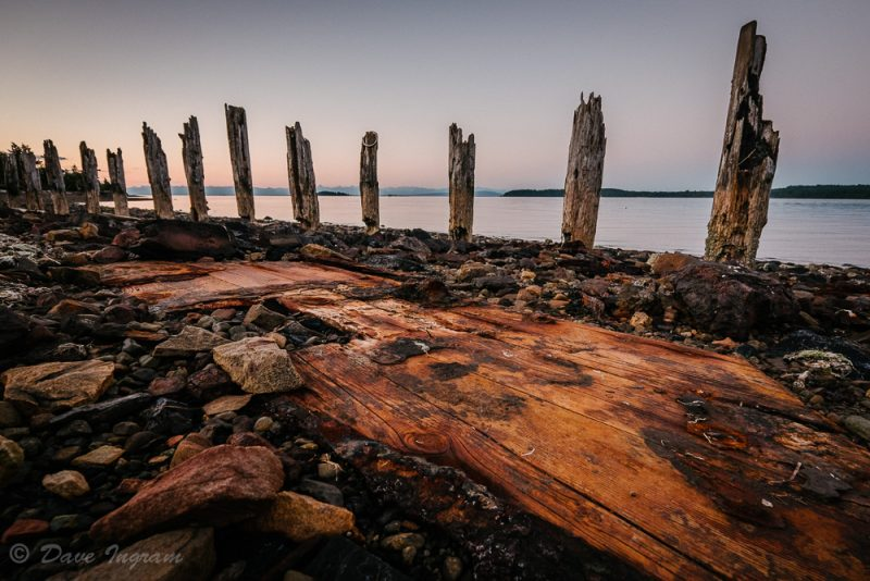 Pilings at Union Bay Beach