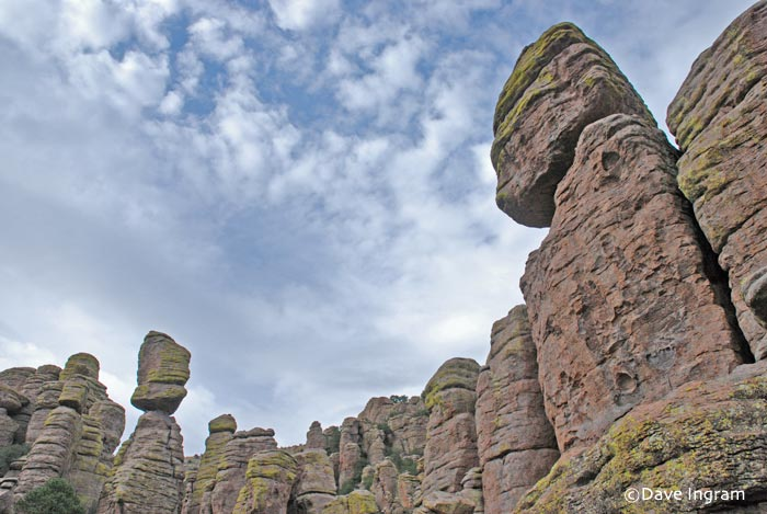 Chiricahua National Monument 2