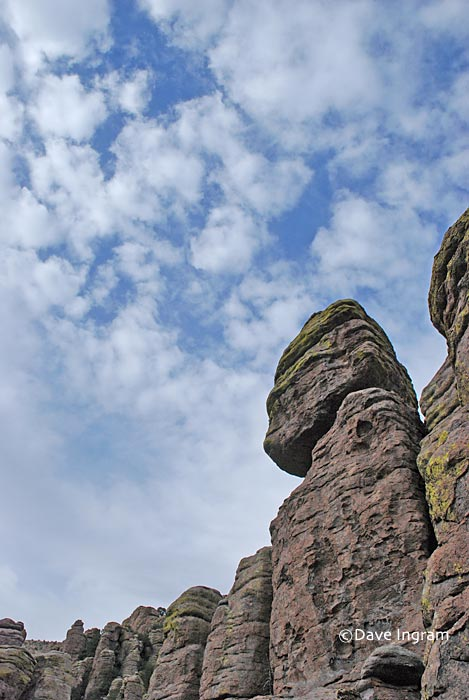 Chiricahua National Monument 3