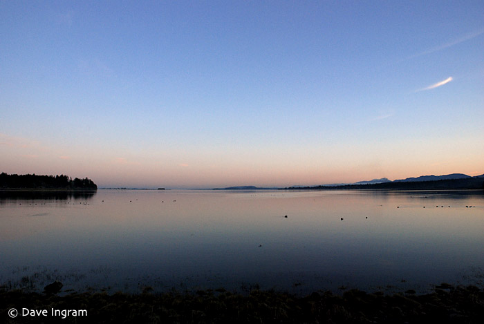 Deep blue evening sky reflected in the water of the bay - a nice change from winter rain.