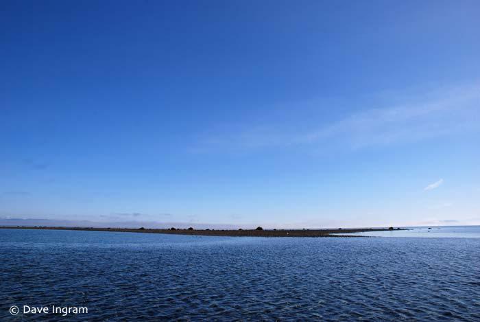 Point Holmes Tidepool
