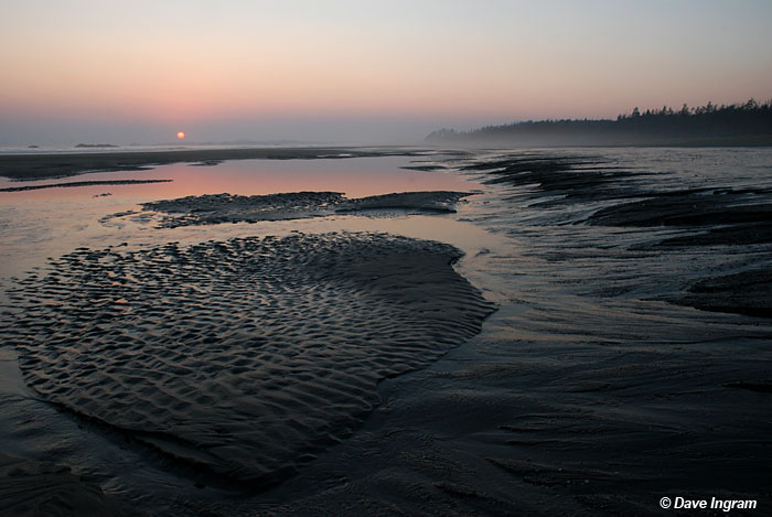 Comber's Beach Sunset #4