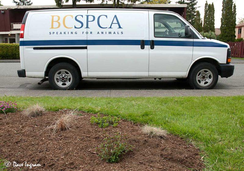 BC SPCA Van