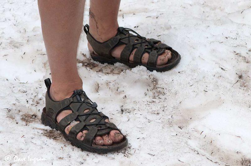Sandals in Snow