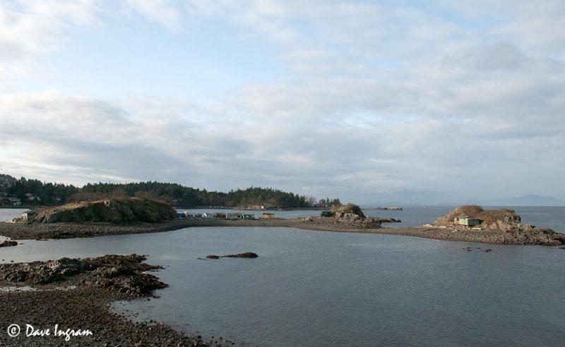 Shack Island, Nanaimo, BC