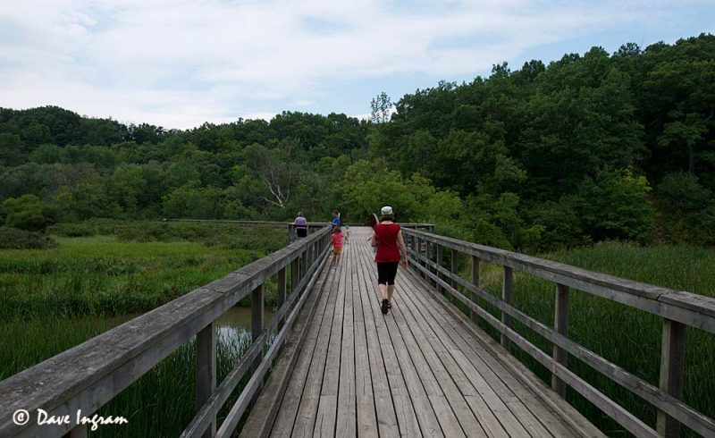 Hendrie Valley Boardwalk