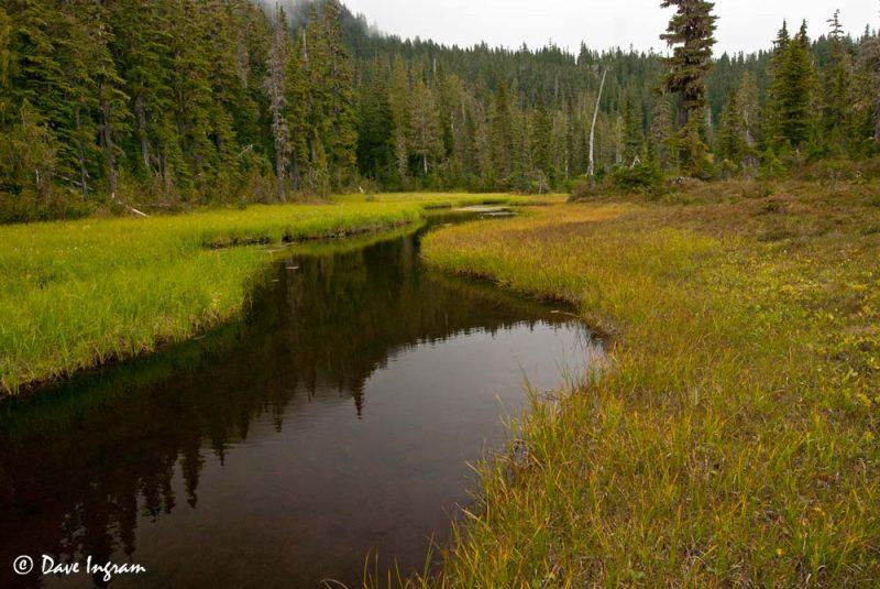 Murray Meadows Pond #2