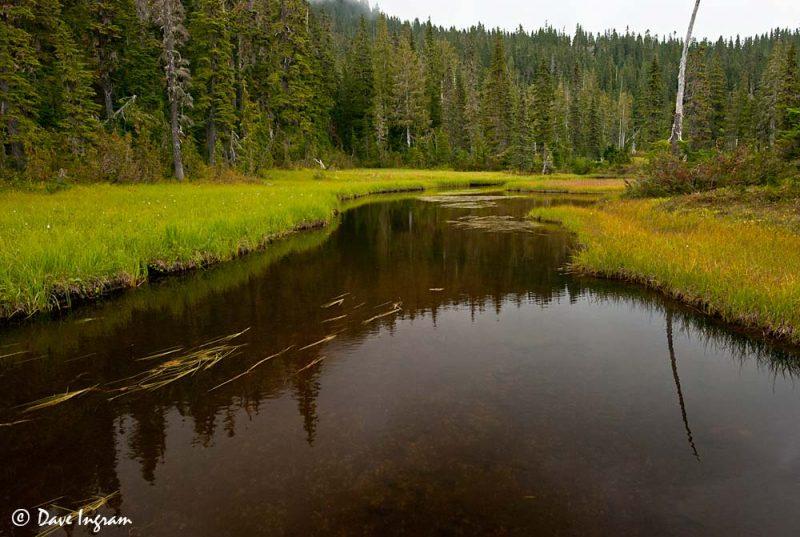 Murray Meadows Pond #3