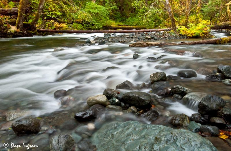 Rosewall Creek