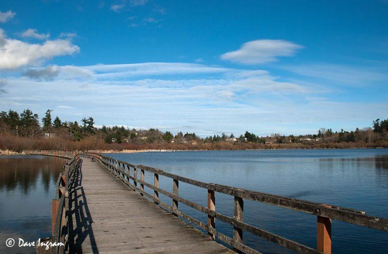 Swan Lake Boardwalk