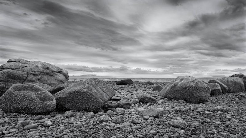Point Holmes Boulders #2