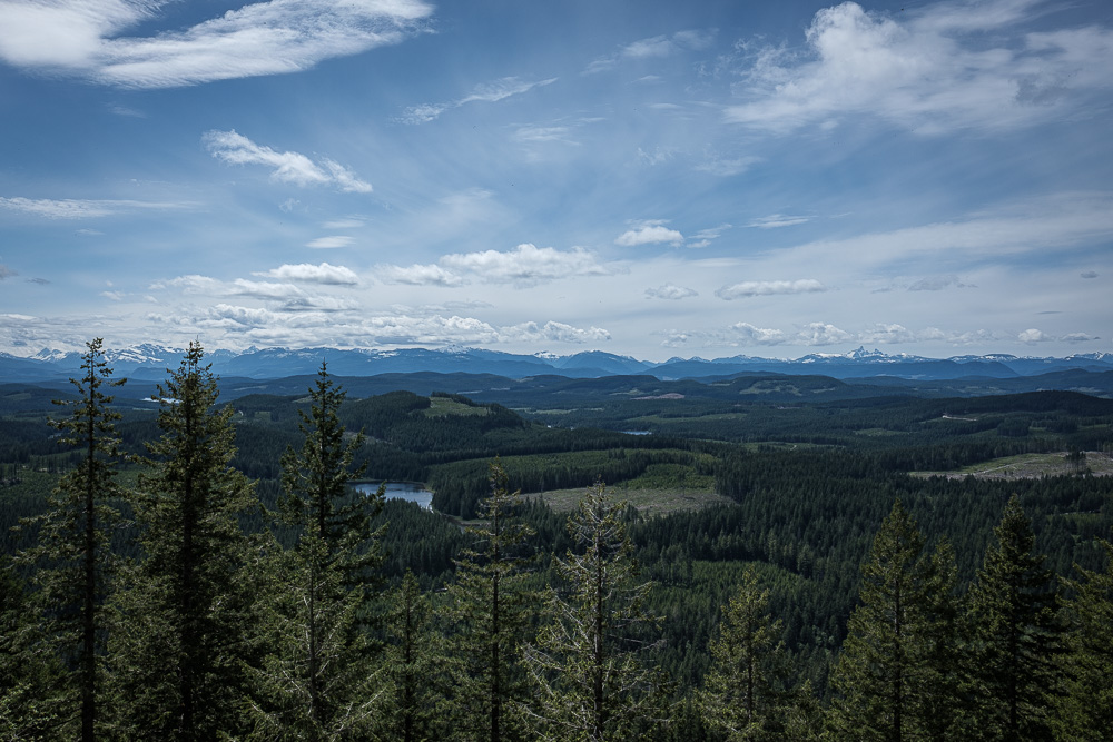 Looking back at the Beaufort Range from a lower viewpoint on the Campbell River Lookout trail.