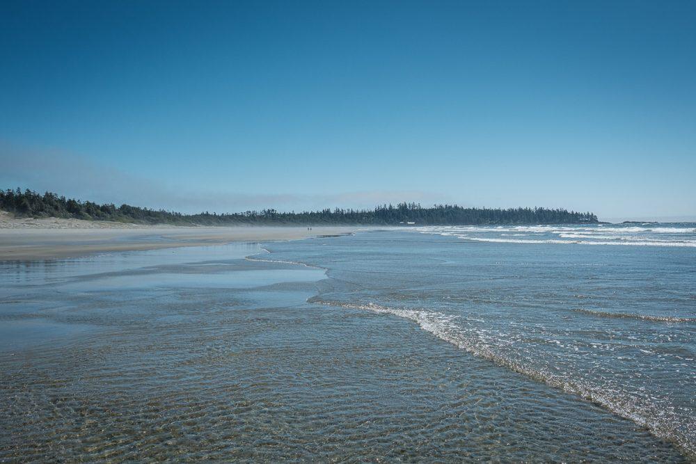 Prime mole crab habitat at Wickaninnish Beach in Pacific Rim National Park Reserve.