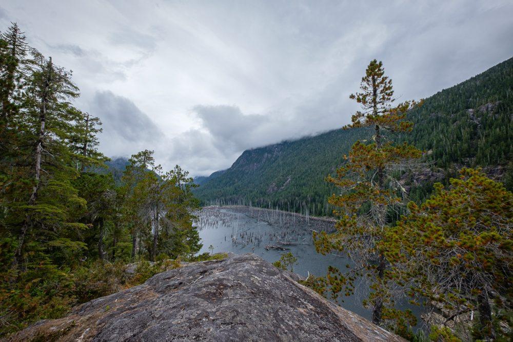 Spires of dead trees in spire lake.