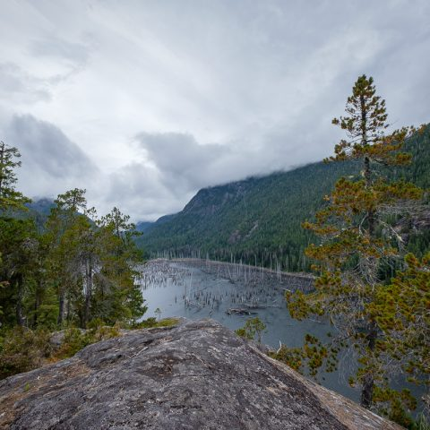 Snag Lake